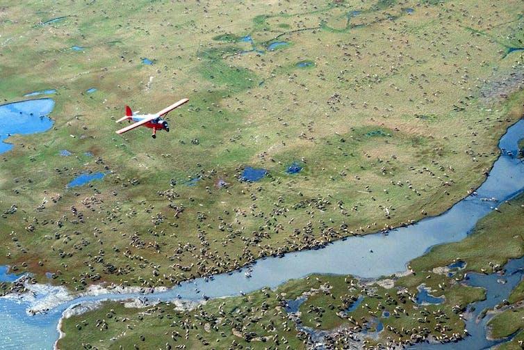 A small plane flying over a coastal area of the Alaska National Wildlife Refuge.