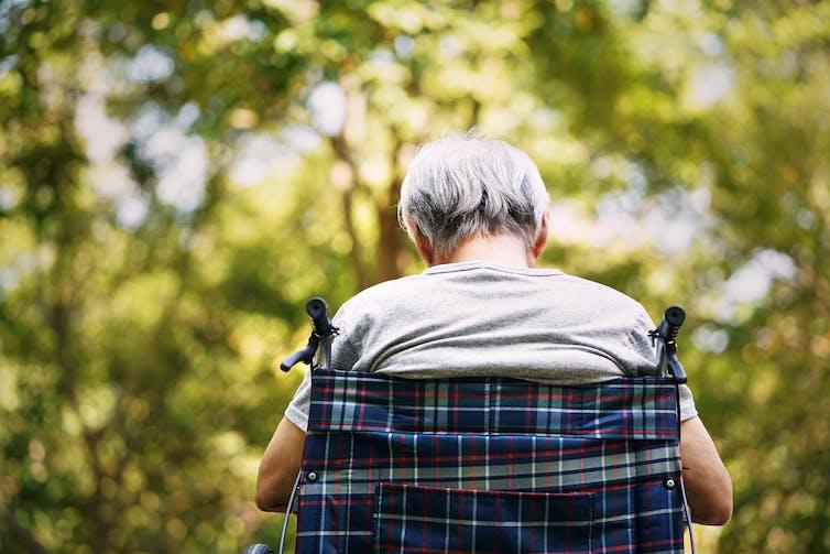 An elderly man sits in a wheelchair in parkland.