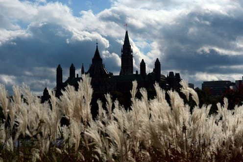 Parliament Hill in silhouette with long grasses in front of it.