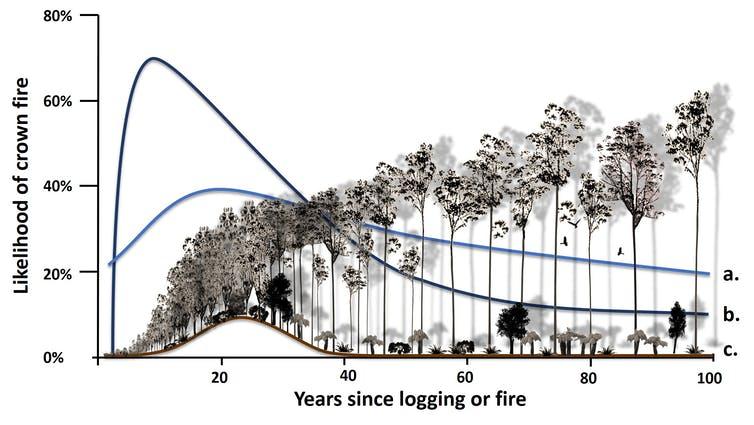 Graph showing the likelihood of crown fire relative to years since logging or fire