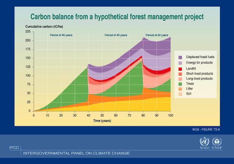 Gráfico que muestra el carbono absorbido y emisiones evitadas
