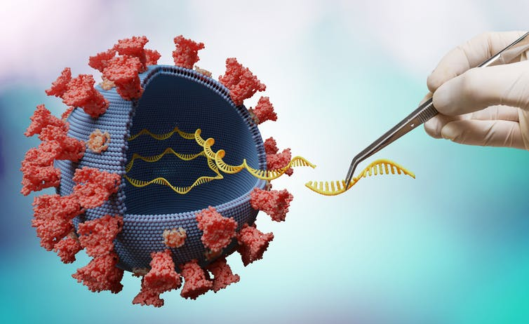 Origins of SARS-CoV-2: Why the lab-leak idea is being considered again-2