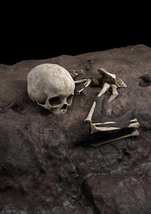 Un crâne et des os humains gisent sur le sol.