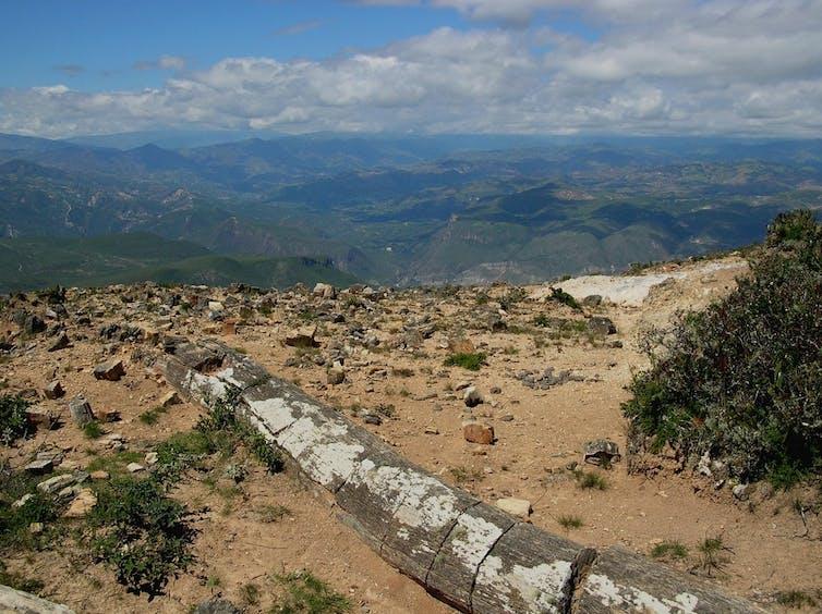 Un gran tronco petrificado en terreno abierto con colinas escarpadas al fondo