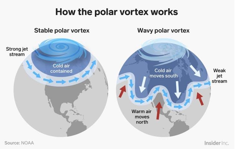 Graphic explaing the polar vortex