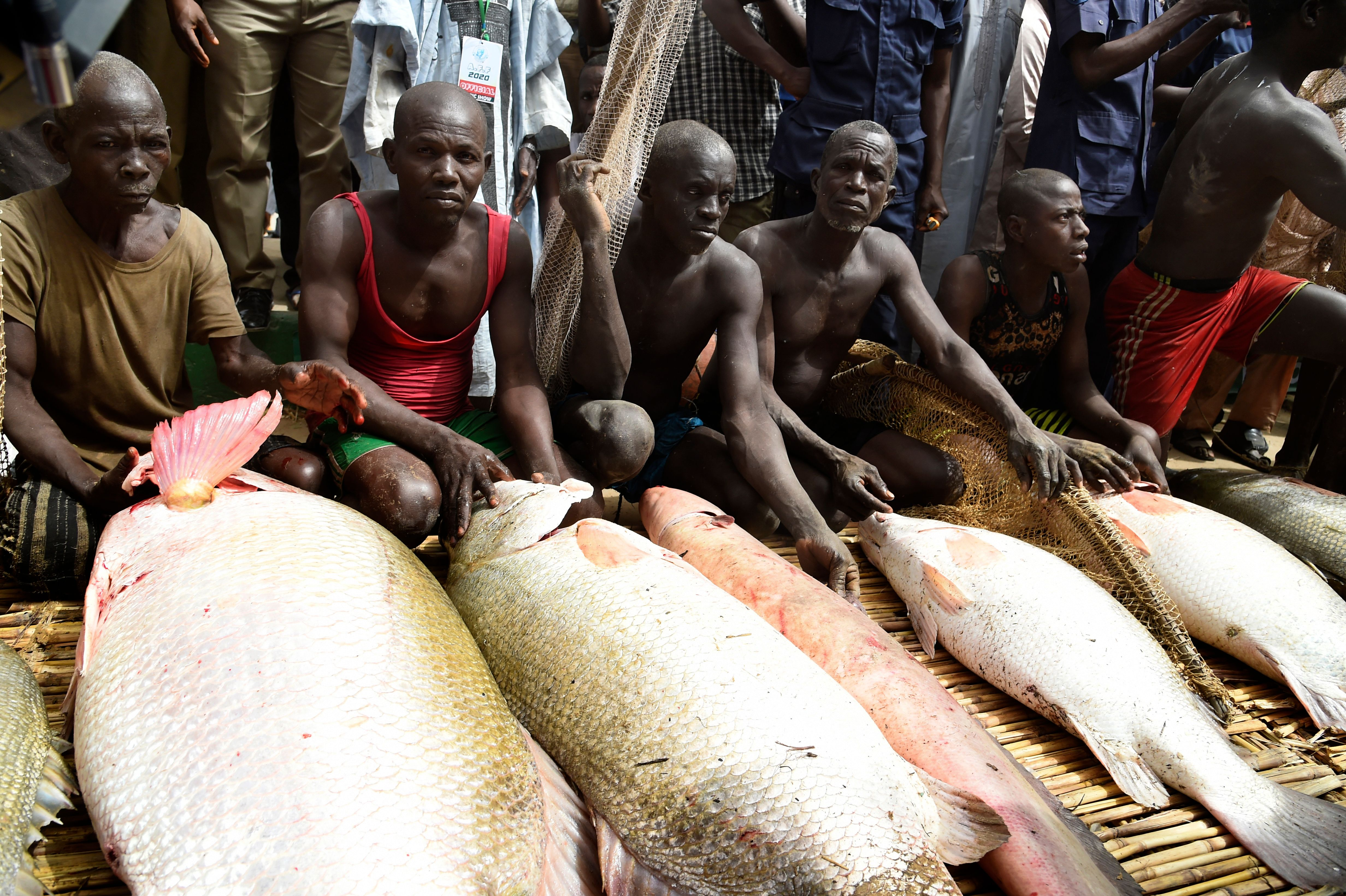 How Illegal Fishing Harms Nigeria and What to Do About It