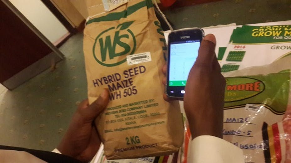 One hand holding a packed of maize seed and another hand holding a mobile phone to check validity of product