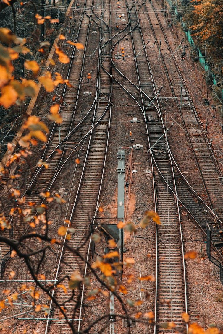 Train rails crisscross in an autumn landscape