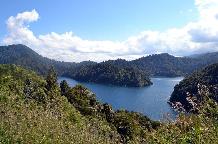 Te Urewera National Park showing hills and lake