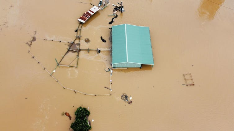 House roof visible above floodwaters