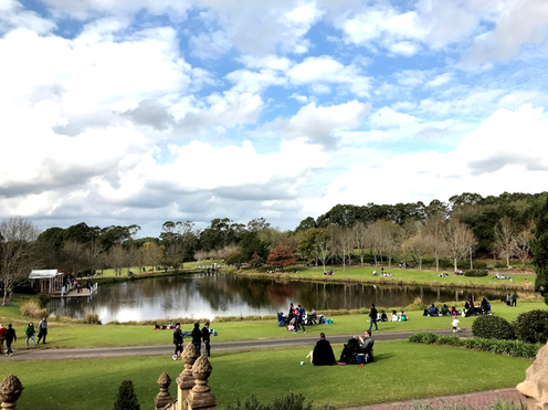 People socialising in a green park around a lake
