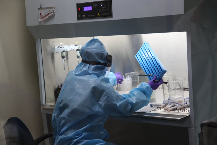 seated researcher in PPE seen from behind in lab