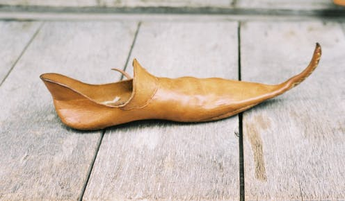 A pointy shoe