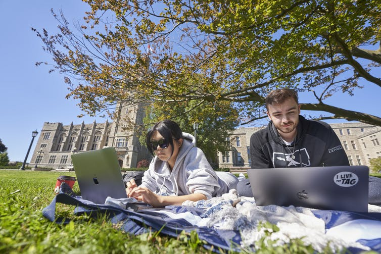 Two students sit in grass with laptops studying next to each other outdoors.