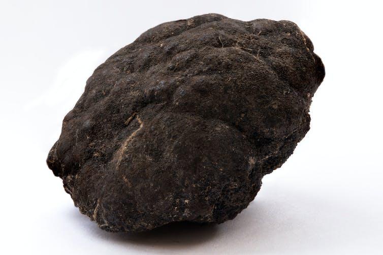 A dark knobbly hunk of rock.