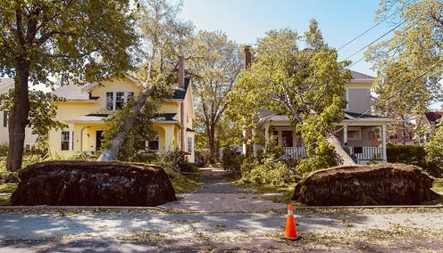 two fallen trees lying on neighbouring homes