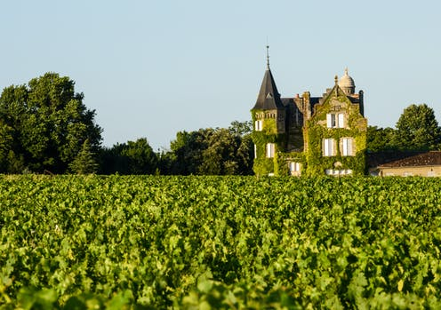 A chateau overlooking a vineyard in Bordeaux