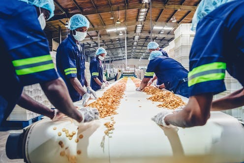 a dry cereal production line with workers and grain