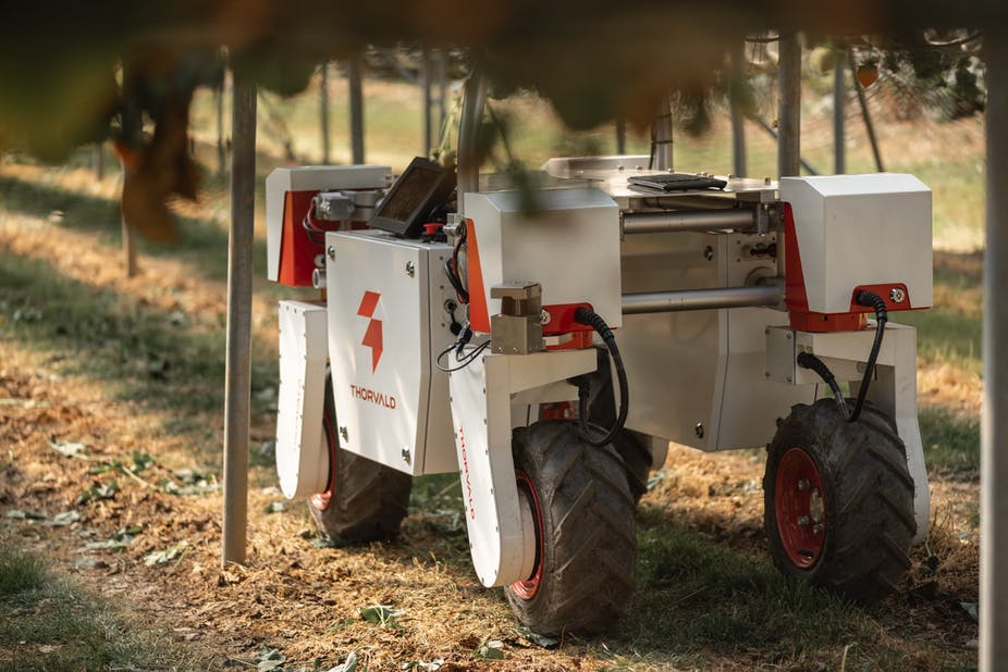 A robotic vehicle in a field