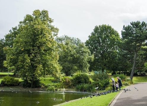 A family feeds ducks by a pond