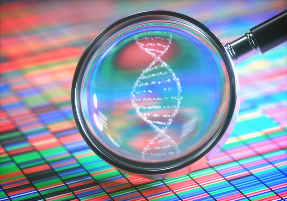A magnifying glass is held over a backdrop of colourful, small rectangles and highlights a looped white structure that represents DNA