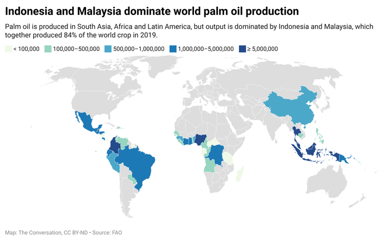 A map of the world color coded according to the amount of palm oil the country produces.