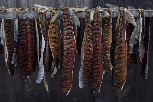 Peaux de poissons séchées