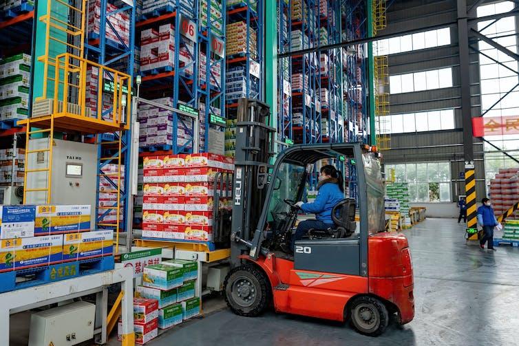 Man driving forklift loads pallets onto warehouse shelves.
