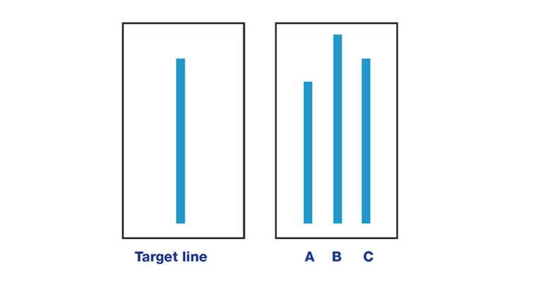 Solomon Asch's conformity experiment line comparison.