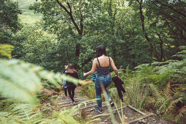 Photos de gens se promenant en forêt