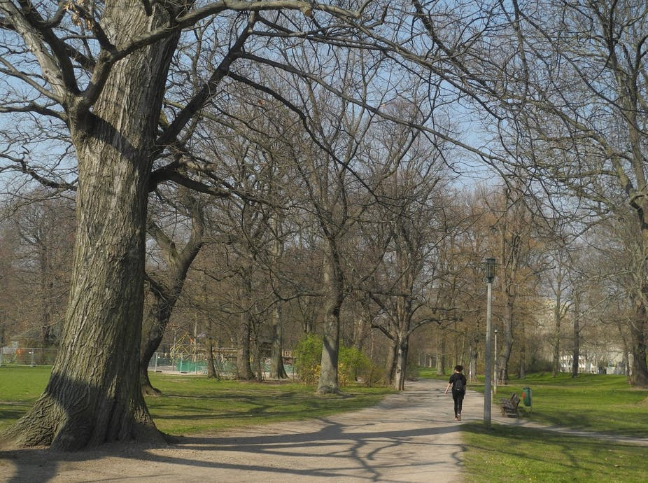Person walking in a park.