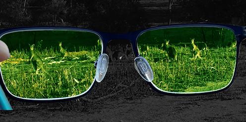 Gafas a través de las que pueden verse canguros