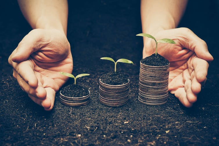 hands with coins sprouting seedlings