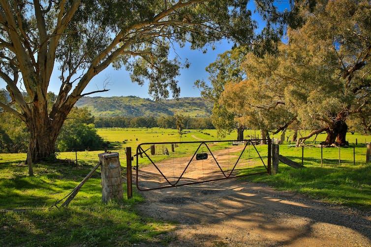gate in rural landscape