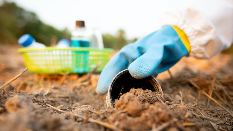 gloved hand takes soil sample with bottles in background