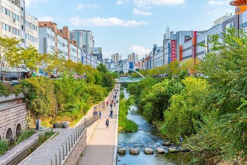 A tree-lined urban stream
