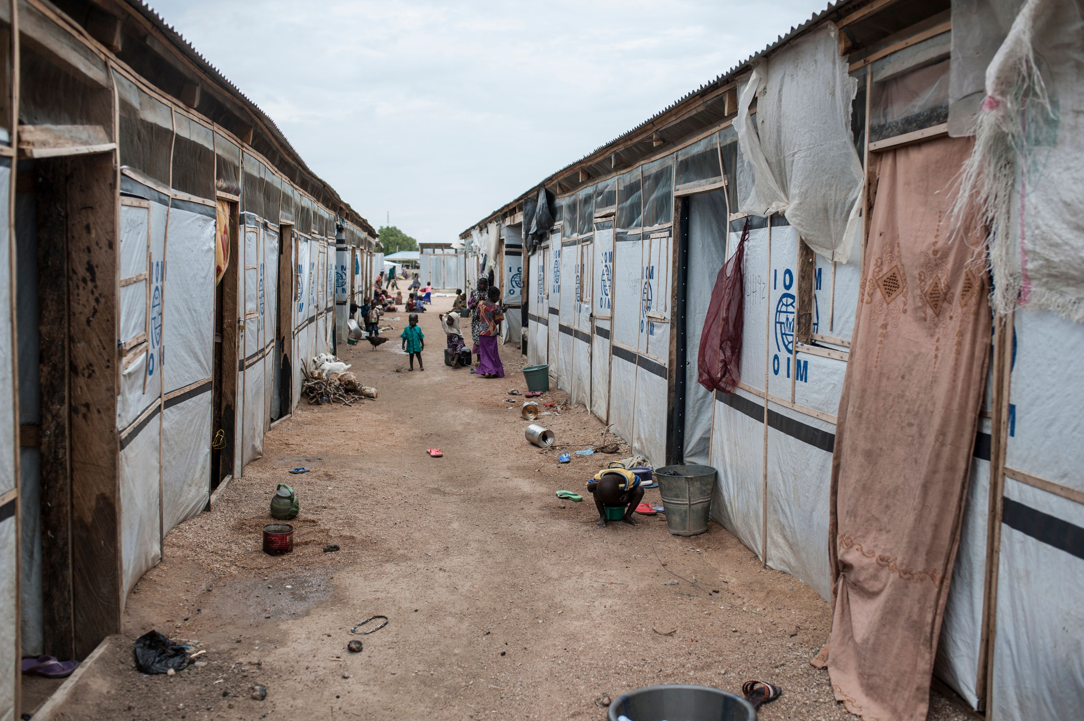 Cholera Is Still a Danger in Nigeria: Here's What the Government Can Do
