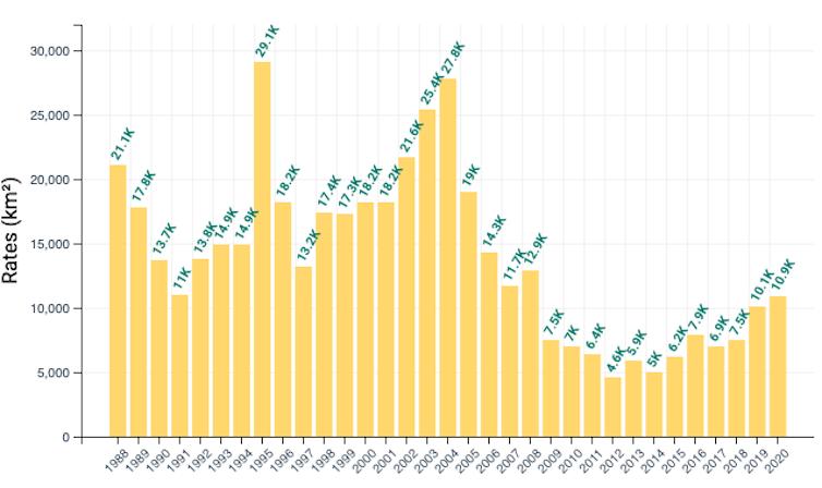gráfico que mostra as taxas de desmatamento no Brasil por ano