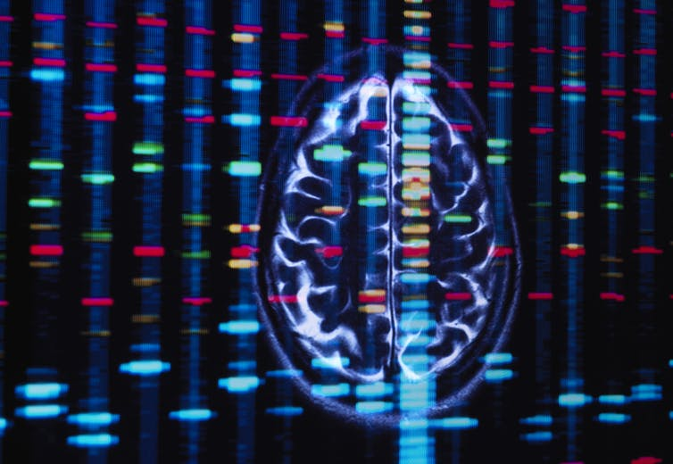 Mixed-ancestry genetic research shows a bit of Native American DNA could reduce risk of Alzheimer's disease