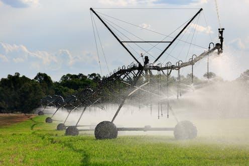Irrigation on crops
