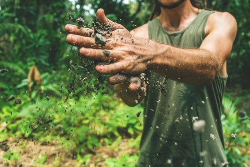 A person rubs their hands with soil