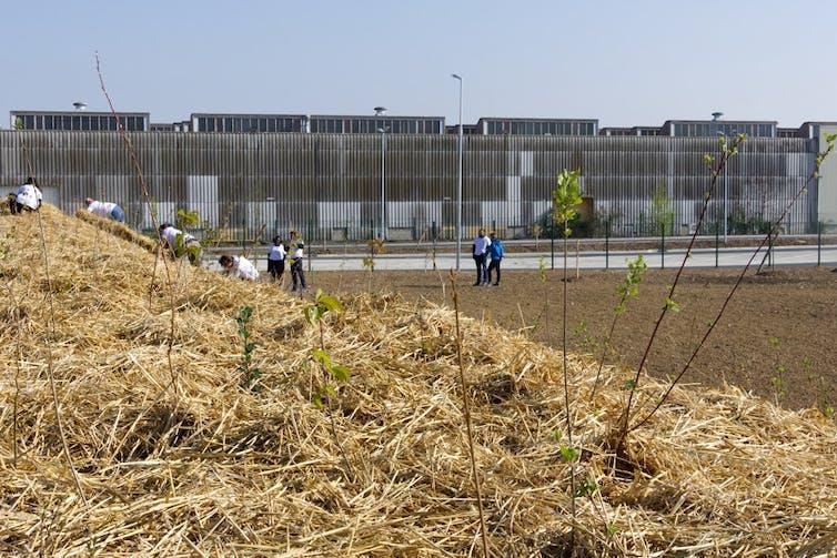 Groupe de personnes en action sur un chantier de reforestation urbaine
