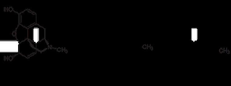 โครงสร้างของโครงสร้างอีพอกซีมอร์ฟิแนน