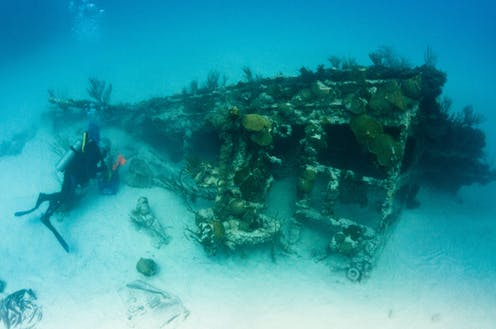 Underwater view of the skeletal bow of a ship encrusted in coral lying on its side on the sandy bottom, to the left a diver explores the wreck