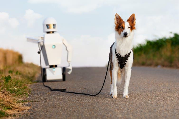A robot takes a dog for a walk