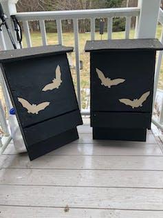 Two bat boxes.