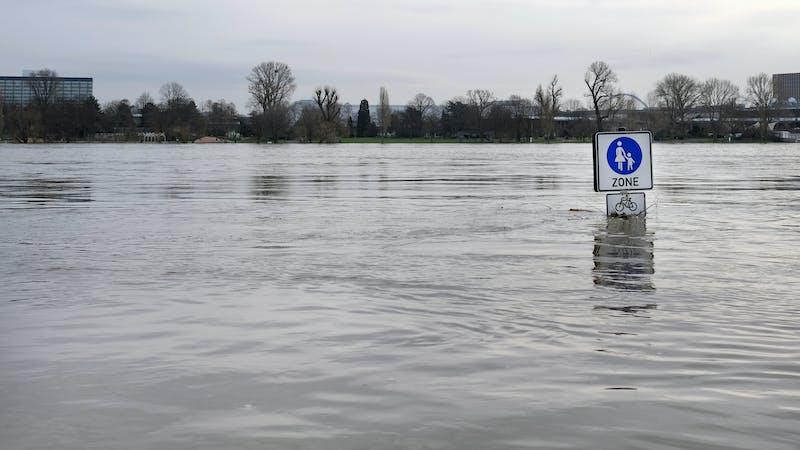 ¿Por qué Alemania no estaba preparada para las graves inundaciones en la cuenca del Rin?