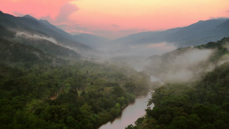 Brazil's Atlantic Forest will change more in the next 50 years than at any time since the last iceage