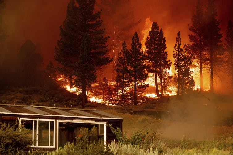 A greenhouse surrounded by dry brush with fire in the forest on the hill behind it