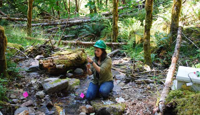 A female scientist takes samples from a stream.